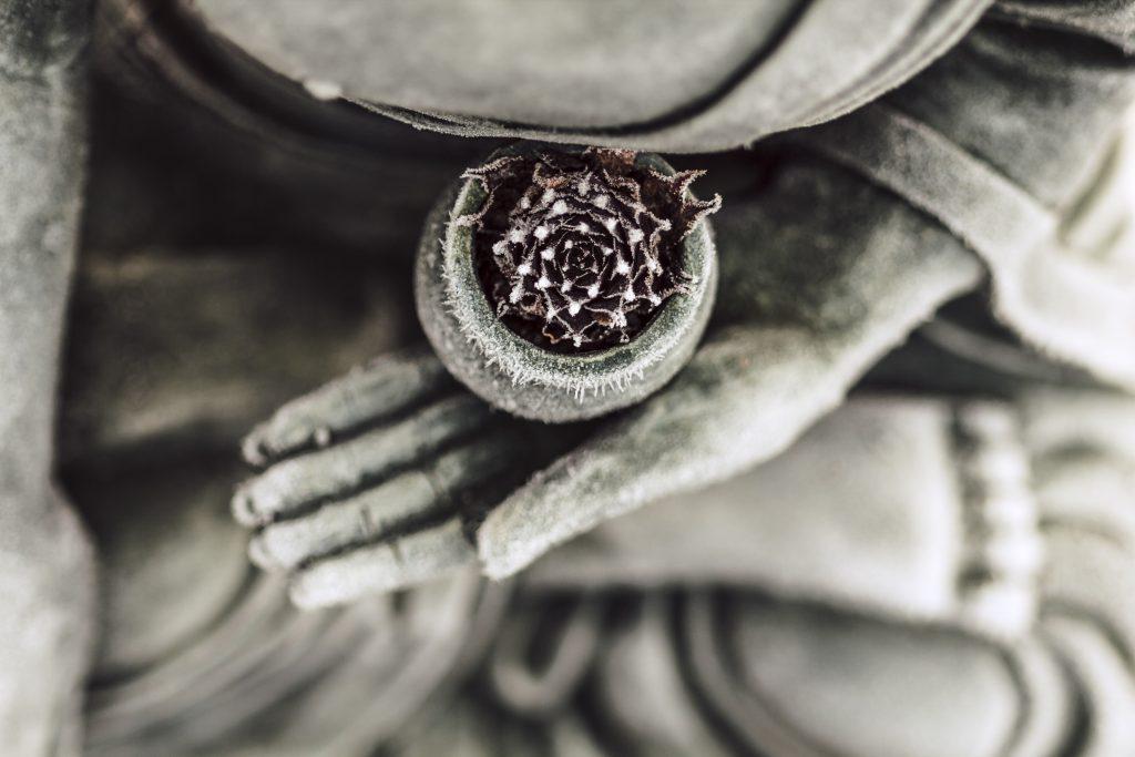 buddha-meditation